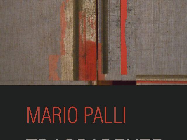 Trasparente Silenzio - personale di Mario Palli